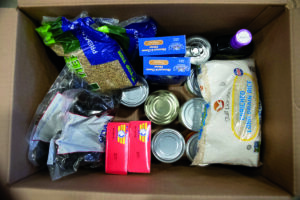 Overhead view of food collected in a box