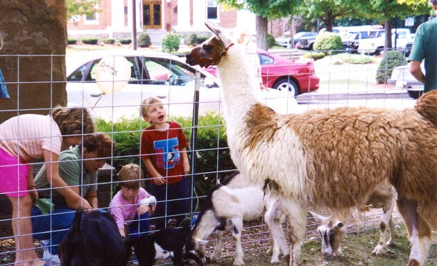 Children enjoy the petting zoo at the Salmon River Festival in Pulaski.